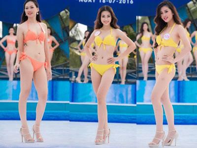 Thí sinh Hoa hậu Việt Nam diễn bikini tranh giải