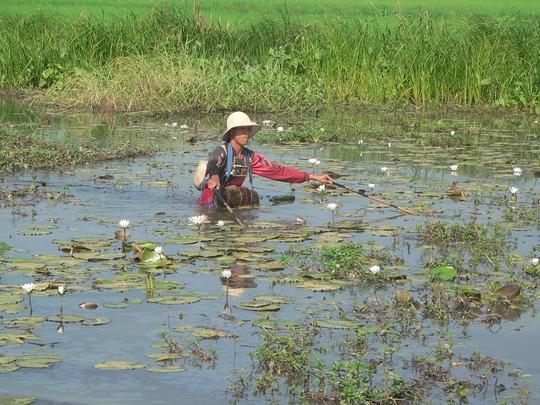 Kiểu bắt cá tận diệt bằng xiệt điện như thế này sẽ bị Campuchia xử phạt rất nặng hoặc bị bỏ tù.