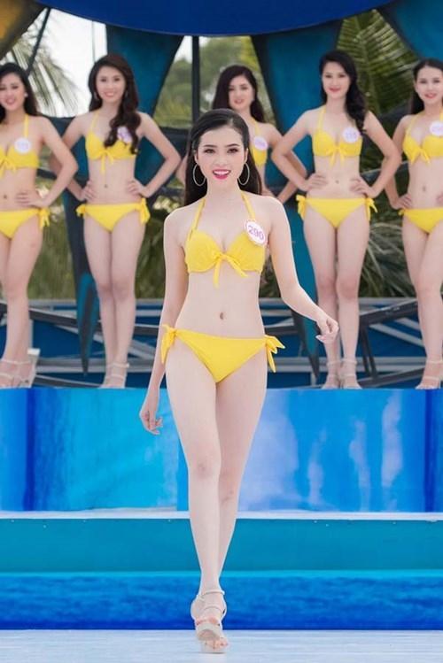 Trưởng BTC Hoa hậu Việt Nam: Ưu tiên cho nhân tố mới là chắc chắn - ảnh 1