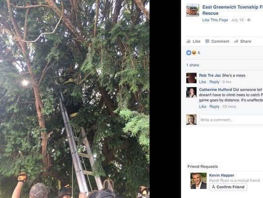 Lính cứu hoả phải dùng thang để giúp đỡ người phụ nữ trèo lên cây cao bắt Pokemon.