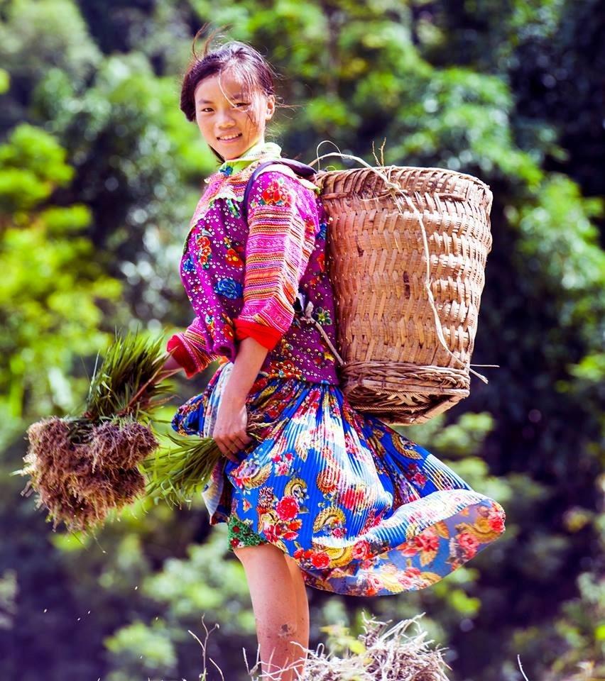 Tuyet tac ruong bac thang Hoang Su Phi mua nuoc do hinh anh 11