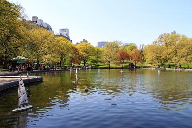 Central Park - Mang xanh khong lo giua New York hinh anh 5