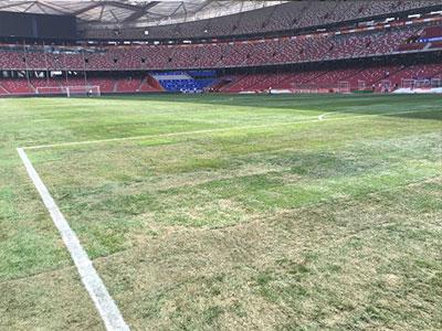 Mặt cỏ sân 10 nghìn tỷ của Trung Quốc thua xa Mỹ Đình