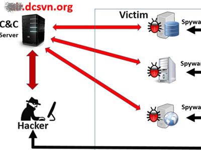 Mã độc tấn công Vietnam Airlines tồn tại ở nhiều cơ quan, doanh nghiệp