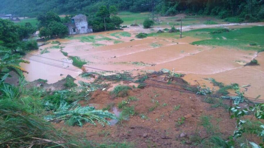 Đất, đá sạt lở đổ tràn cả xuống ruộng lúa của người dân.