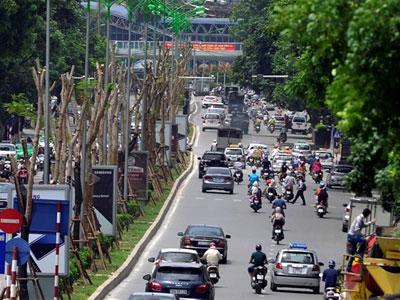 Bắt tay rà soát, Hà Nội giảm được 40% kinh phí cắt cỏ