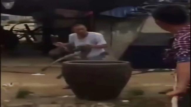 Thảm cảnh những chú chó bị luộc sống tại các lò mổ Trung Quốc - Ảnh 2.