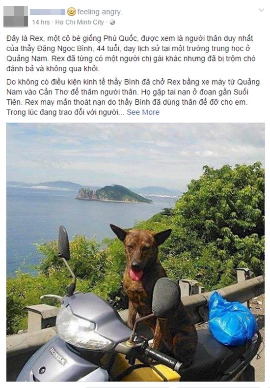 Thầy giáo nghèo lang thang khắp Sài Gòn để tìm lại con chó Phú Quốc bị mất - Ảnh 1.