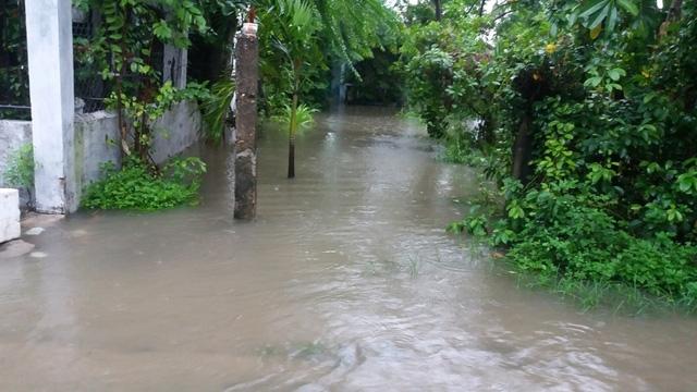 Khu dân cư Đà Sơn, phường Hòa Khánh Nam, quận Liên Chiểu cũng đã bị ngập