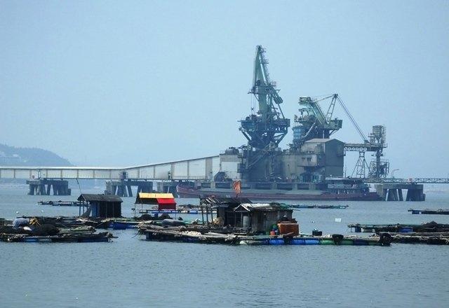 cá chết, cá chết ở Nghi Sơn, xả thải, vệt nước đen, công ty lọc hóa dầu Nghi Sơn, Thanh Hóa