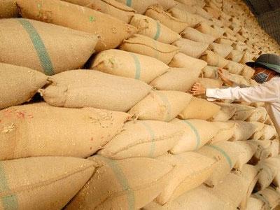 Trung Quốc dựng thêm rào cản với gạo Việt