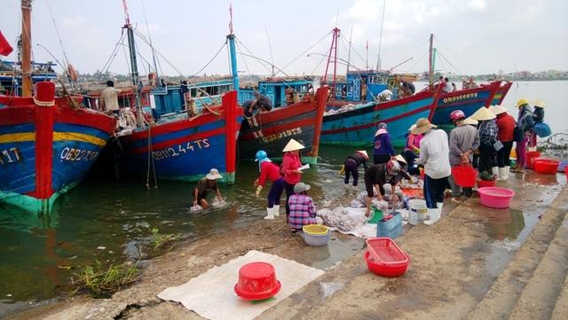 Chiều 20/9, tại chợ Đồng Hới, nhiều loại hải sản nằm trong danh mục được xác định nhiễm độc tố vẫn được bày bán tràn lan