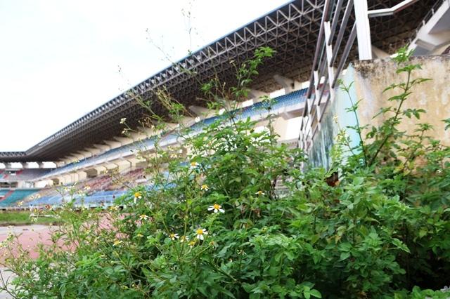 Sau khi CLB Bóng đá giải thể, Sân vận động Ninh Bình bỏ hoang đến nay.