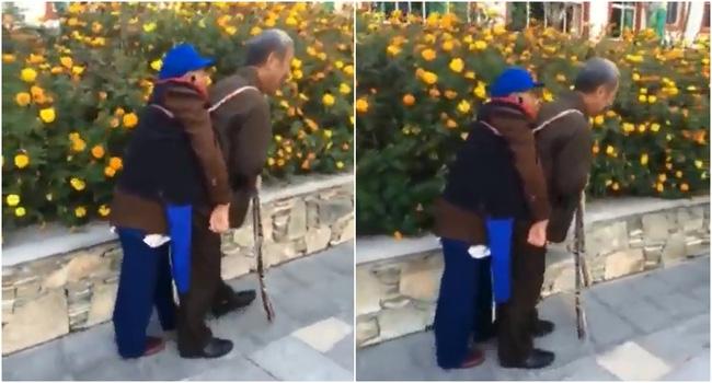 Bạn sẽ thấy hạnh phúc chẳng ở đâu xa khi chứng kiến cụ ông địu người vợ ốm yếu đi dạo phố mỗi ngày - Ảnh 3.