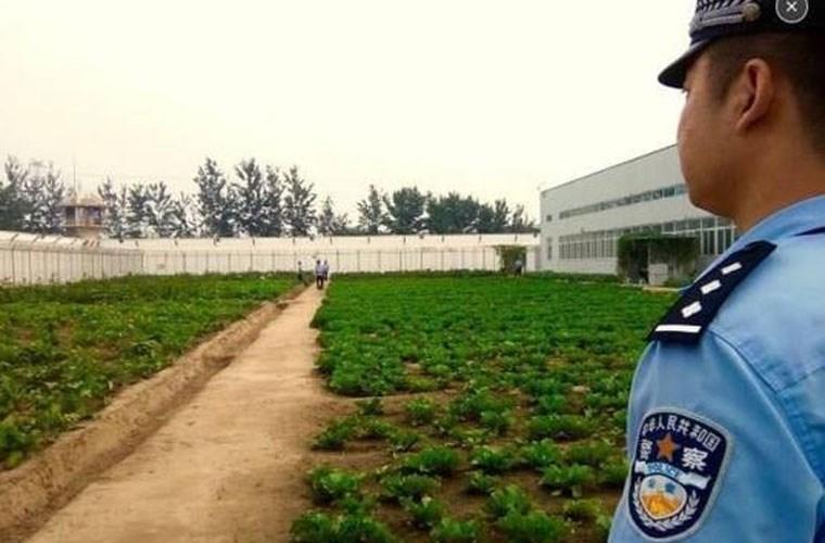 """Soi ben trong nha tu """"doc la"""" o Trung Quoc-Hinh-5"""