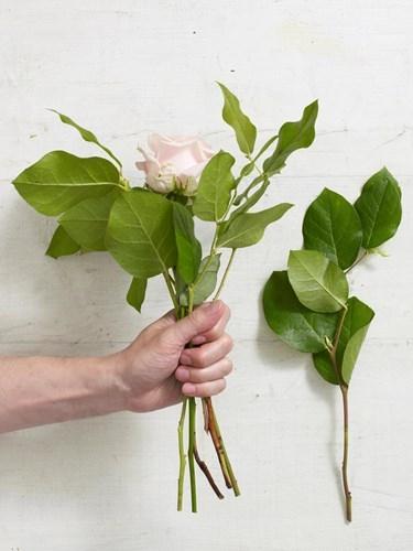 Nam mo thay hoa, bao truoc dieu gi trong tuong lai?-Hinh-3