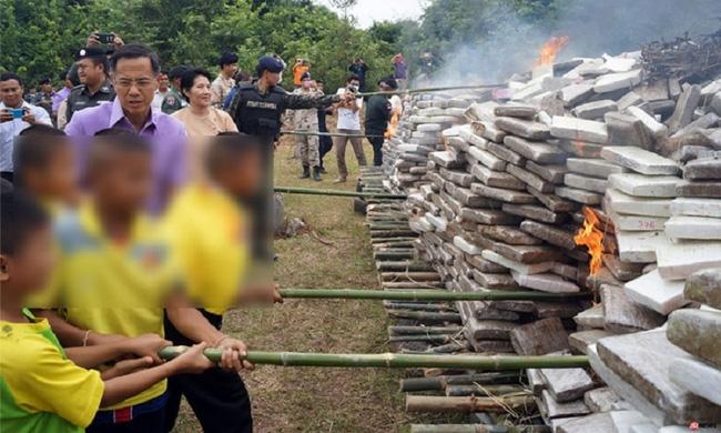Thái Lan: Điều động học sinh đi đốt 8 tấn cần sa - Ảnh 1.