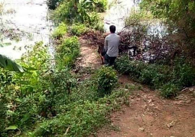 Chó nghiệp vụ đã được đưa đến bờ sông Uông, nơi Dũng đã lẩn trốn để truy tìm