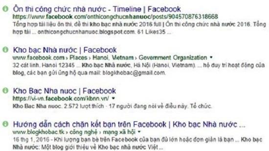 mao danh website kho bac nha nuoc de lua dao hinh anh 1