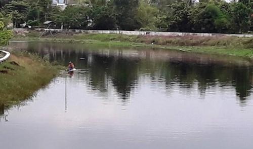 TT-Huế: Cá chết bất thường trên các sông ở Quảng Điền - ảnh 1