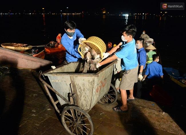 Hà Nội: Trắng đêm khắc phục hậu quả cá chết trắng ven hồ Tây - Ảnh 7.