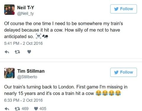 HY HỮU: Tàu hỏa đâm phải bò, fan Arsenal lỡ trận thắng Burnley - 1