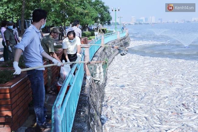 Ngày 3/10: Cá chết nổi ngày càng nhiều ở hồ Tây; đang tiếp tục bơm oxy, sục khí - Ảnh 6.