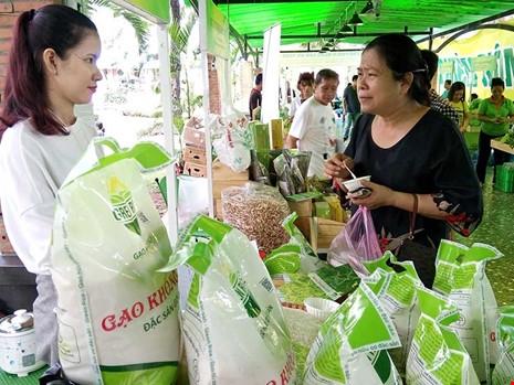 Nhiều lô hàng gạo Việt bị trả về: Khắc phục ra sao?  - ảnh 1