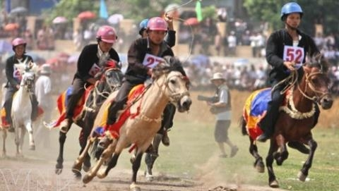 Kết quả hình ảnh cho Tập đoàn Hàn Quốc muốn chi 500 triệu USD xây trường đua ngựa tại Bắc Ninh