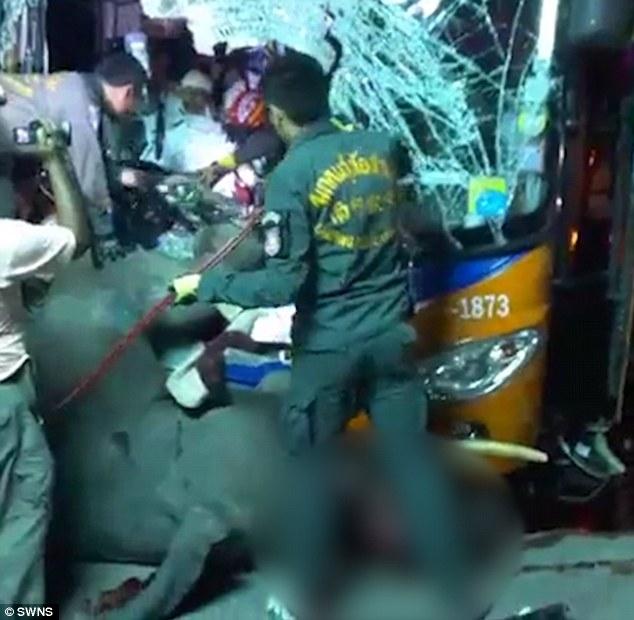 thai lan: xe bus dau dau voi song chuong, ket cuc bi tham hinh anh 2