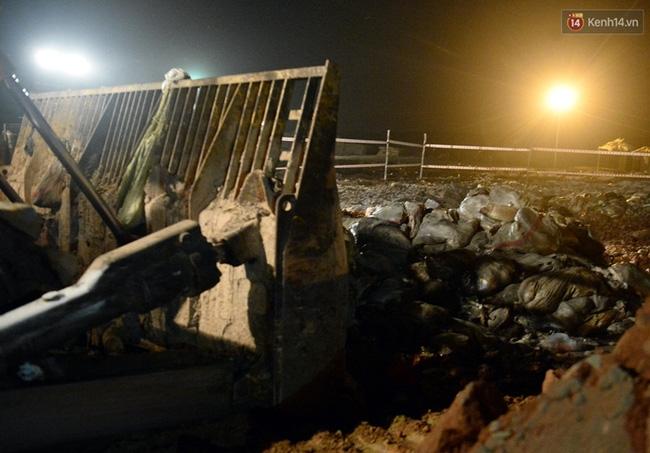 Gần 80 tấn cá chết ở hồ Tây được tiêu hủy như thế nào? - Ảnh 12.