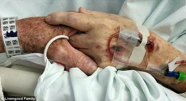Khoảnh khắc hai vợ chồng nắm chặt tay nhau trước khi qua đời gây xúc động mạnh cho những ai chứng kiến