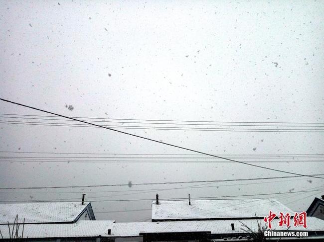 Trung Quốc: Những trận tuyết đầu mùa đẹp đến nao lòng - Ảnh 19.