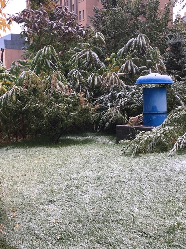 Trung Quốc: Những trận tuyết đầu mùa đẹp đến nao lòng - Ảnh 20.