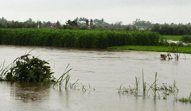 Image result for Bé trai bị cuốn trôi, nghi do thủy điện bất ngờ xả nước
