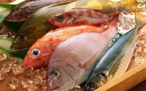 EU cảnh báo thuỷ sản Việt Nam nhiễm kim loại nặng