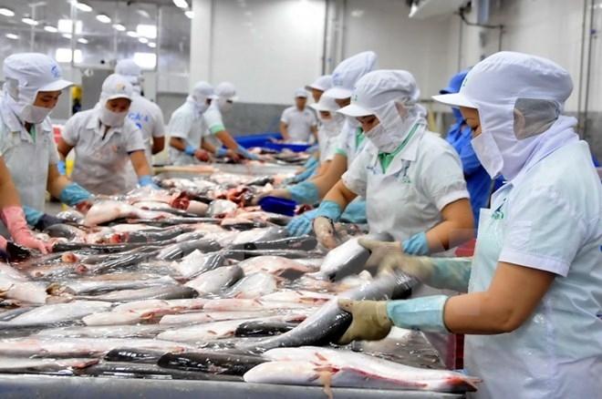 Image result for CP thủy sản Nam Sông Hậu bị bắt