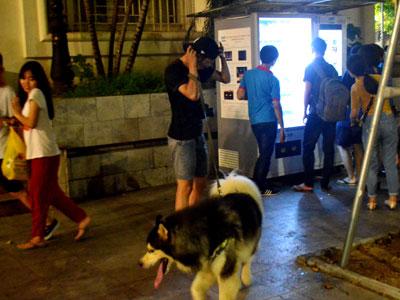 Bất an với chó dữ Becgie, Pitbull... lè lưỡi ở phố đi bộ hồ Gươm