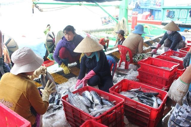 Bà con ngư dân hối hả đưa cá lên bán