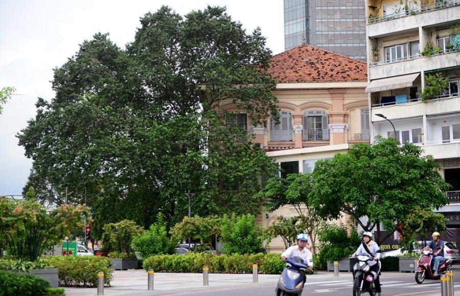 Nhung net kien truc tram tuoi tren pho di bo Nguyen Hue hinh anh 15