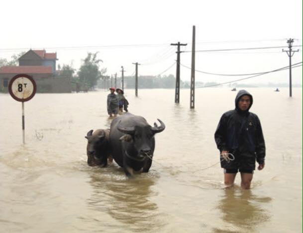 Chùm ảnh: Những hình ảnh nhói lòng về mưa lũ kinh hoàng ở miền Trung - Ảnh 19.