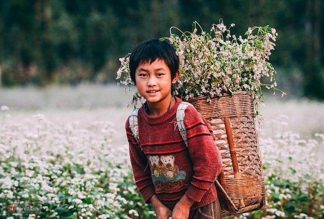 Ngắm mùa hoa tam giác mạch đẹp mê mải về ở Hà Giang - Ảnh 10.
