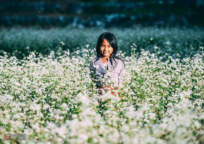 Ngắm mùa hoa tam giác mạch đẹp mê mải về ở Hà Giang - Ảnh 12.