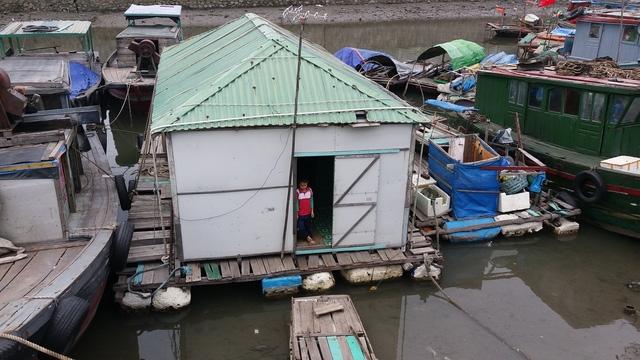 Hàng trăm lồng bè cùng hơn 600 nhân khẩu tại TP Cẩm Phả cũng đã được đưa về nơi tránh trú an toàn
