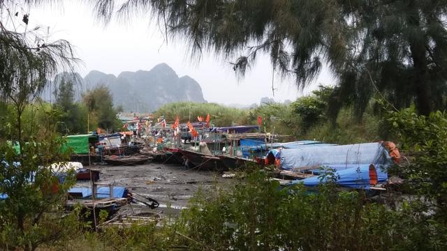 Các loại thuyền nhỏ đã về nơi tránh trú tại khu vực Bến Do, Cẩm Phả ngày từ chiều qua.