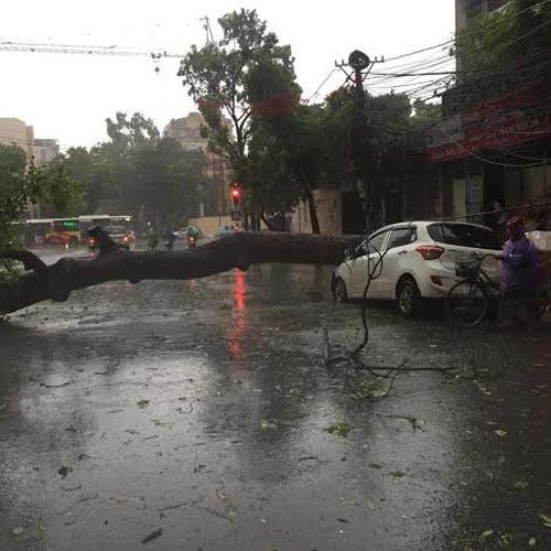 Ảnh hưởng bão số 7, Hà Nội có mưa lớn và gió giật cấp 6 - 1