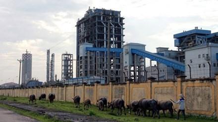 Nhà máy Đạm Ninh Bình phải đắp chiếu vì càng sản xuất càng lỗ từ tháng 3/2016 đến nay. Ảnh: Minh Đức.