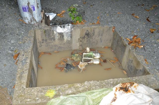 Nhiều hố đầy nước bên trong