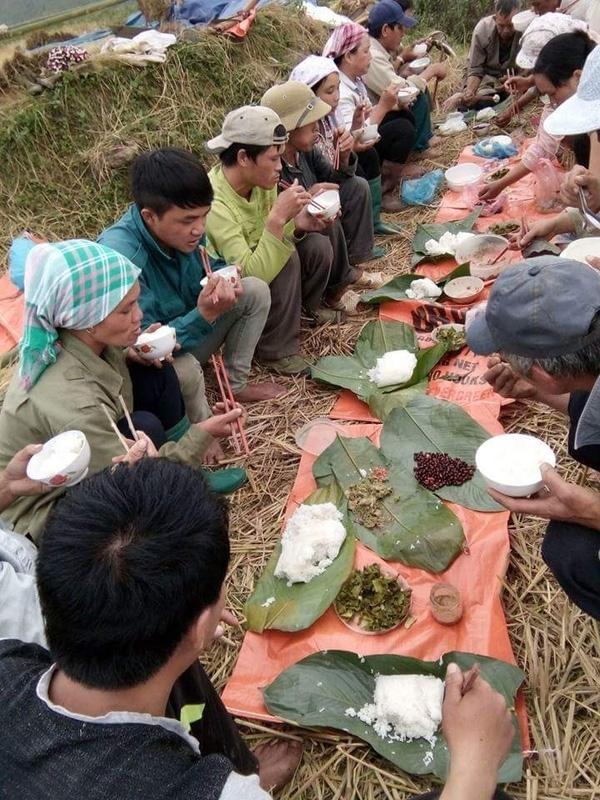 cơm trưa của người nông dân nghèo