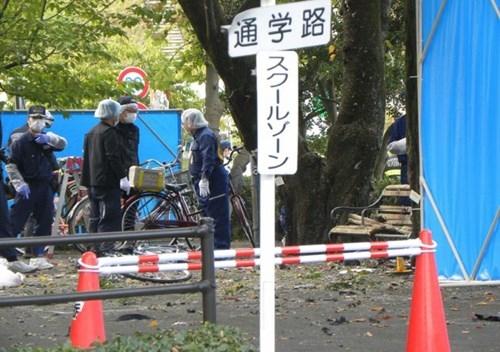 Nổ liên hoàn ở công viên Nhật Bản, 3 người thương vong ảnh 1